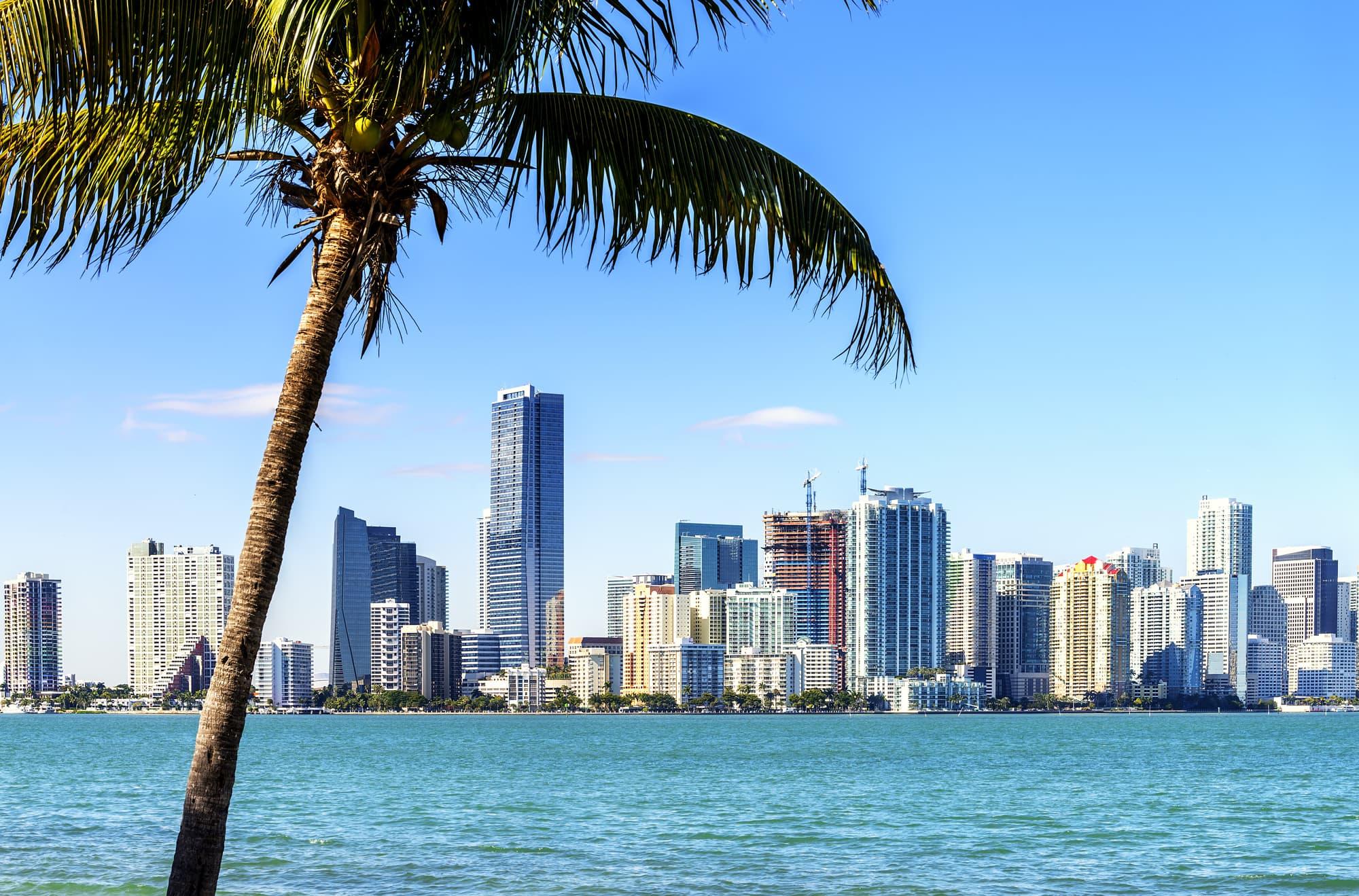 Le top 10 des activités à faire dans le centre de Miami