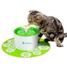 Les avantages de la fontaine à eau pour chat