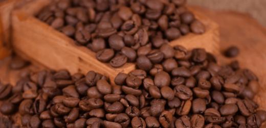 Découvrez le café du Costa Rica, des grains qui valent de l'or