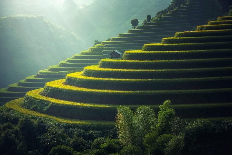 Que faire à Bali ? 3 expériences à ne pas rater !