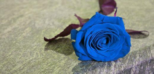 Pourquoi plaçons-nous des fleurs sur les tombes?