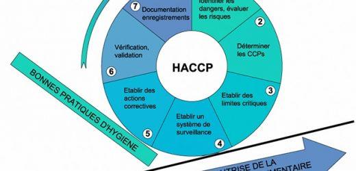 Financement de la formation HACCP par Pôle emploi