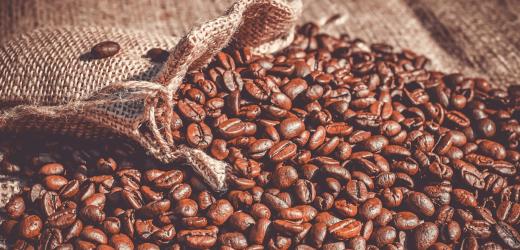 Le café mexicain, une boisson hors du commun