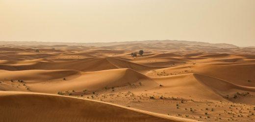 Deux destinations à privilégier pour une expédition au cœur du désert