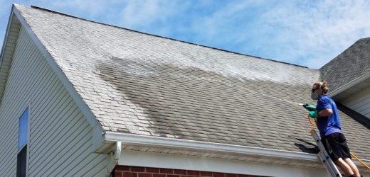 Pourquoi faire appel à une entreprise de demoussage de toiture?